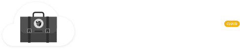 VyprVPN for Business Kosten
