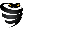 VyprVPN Pricing Cost